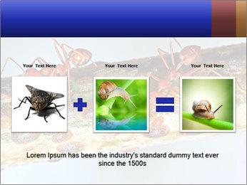 0000072127 PowerPoint Templates - Slide 22