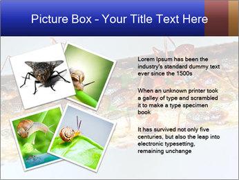 0000072127 PowerPoint Templates - Slide 23