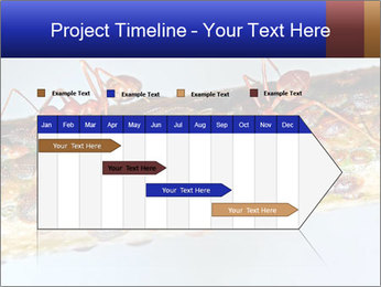 0000072127 PowerPoint Template - Slide 25