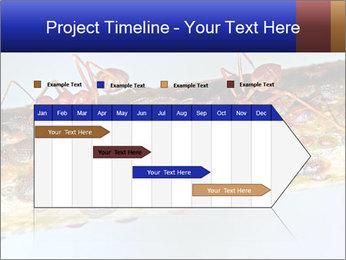 0000072127 PowerPoint Templates - Slide 25