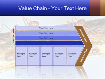 0000072127 PowerPoint Templates - Slide 27
