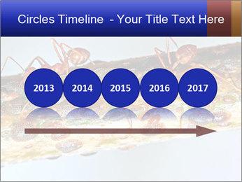 0000072127 PowerPoint Templates - Slide 29