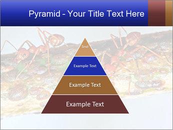 0000072127 PowerPoint Templates - Slide 30