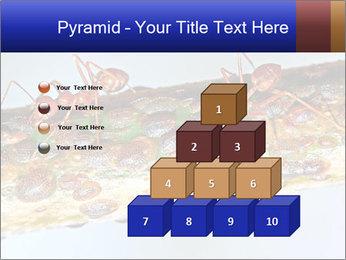 0000072127 PowerPoint Templates - Slide 31