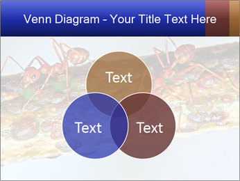 0000072127 PowerPoint Templates - Slide 33