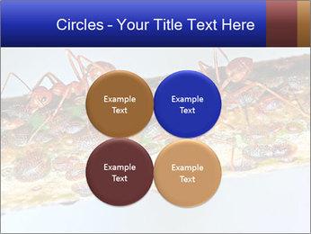 0000072127 PowerPoint Templates - Slide 38