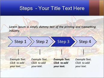 0000072127 PowerPoint Templates - Slide 4