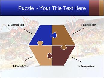 0000072127 PowerPoint Templates - Slide 40