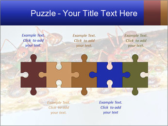 0000072127 PowerPoint Templates - Slide 41