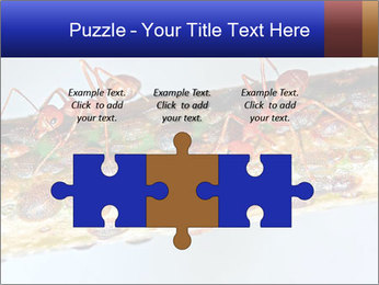 0000072127 PowerPoint Template - Slide 42