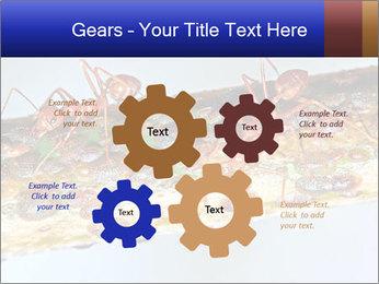 0000072127 PowerPoint Templates - Slide 47
