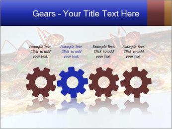 0000072127 PowerPoint Templates - Slide 48