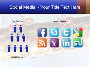 0000072127 PowerPoint Templates - Slide 5