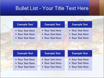 0000072127 PowerPoint Templates - Slide 56