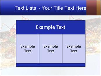 0000072127 PowerPoint Templates - Slide 59
