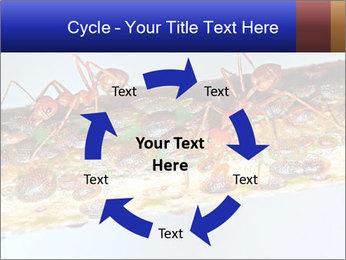0000072127 PowerPoint Templates - Slide 62