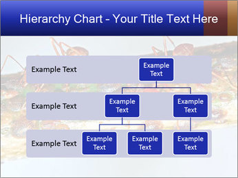 0000072127 PowerPoint Templates - Slide 67