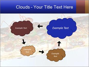 0000072127 PowerPoint Templates - Slide 72