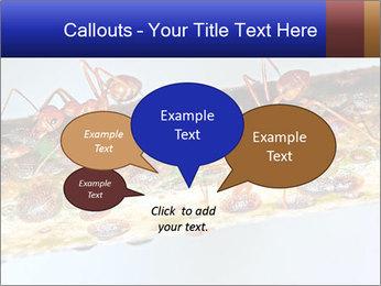 0000072127 PowerPoint Templates - Slide 73
