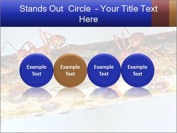 0000072127 PowerPoint Templates - Slide 76