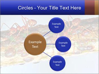 0000072127 PowerPoint Templates - Slide 79