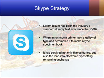 0000072127 PowerPoint Template - Slide 8