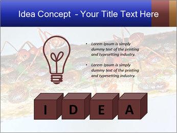 0000072127 PowerPoint Templates - Slide 80