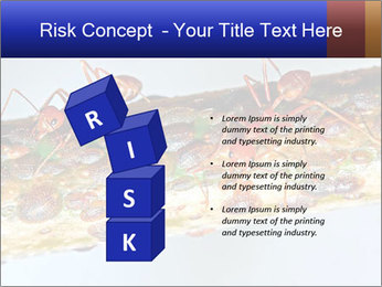 0000072127 PowerPoint Templates - Slide 81