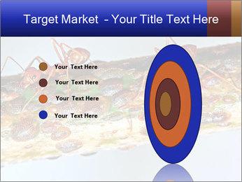0000072127 PowerPoint Templates - Slide 84