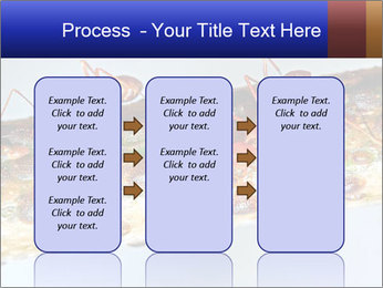 0000072127 PowerPoint Templates - Slide 86