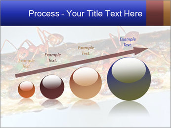 0000072127 PowerPoint Template - Slide 87