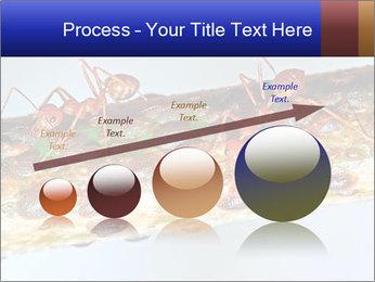 0000072127 PowerPoint Templates - Slide 87