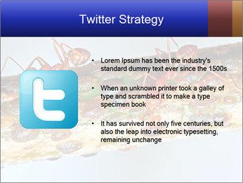 0000072127 PowerPoint Templates - Slide 9