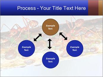 0000072127 PowerPoint Templates - Slide 91