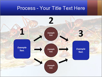 0000072127 PowerPoint Template - Slide 92