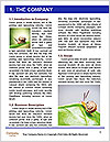 0000072127 Word Template - Page 3