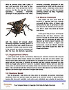 0000072127 Word Template - Page 4