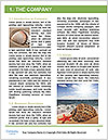 0000072128 Word Template - Page 3