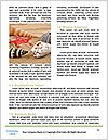 0000072128 Word Template - Page 4