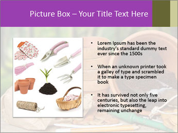 0000072130 PowerPoint Template - Slide 13