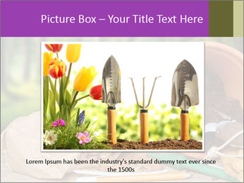 0000072130 PowerPoint Template - Slide 15