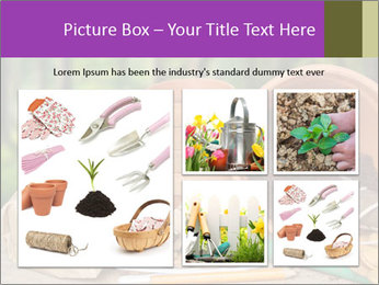0000072130 PowerPoint Template - Slide 19
