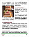 0000072140 Word Template - Page 4