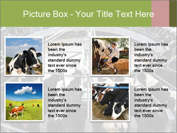 0000072150 PowerPoint Template - Slide 14