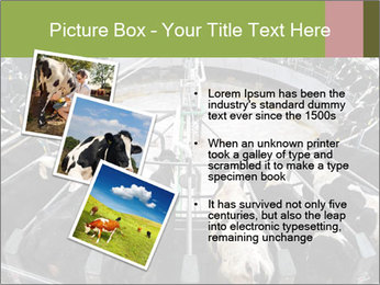 0000072150 PowerPoint Template - Slide 17