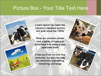 0000072150 PowerPoint Template - Slide 24