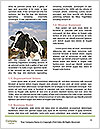 0000072150 Word Templates - Page 4