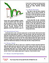 0000072153 Word Template - Page 4