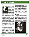 0000072156 Word Template - Page 3