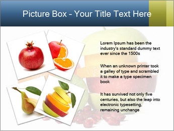0000072164 PowerPoint Template - Slide 23